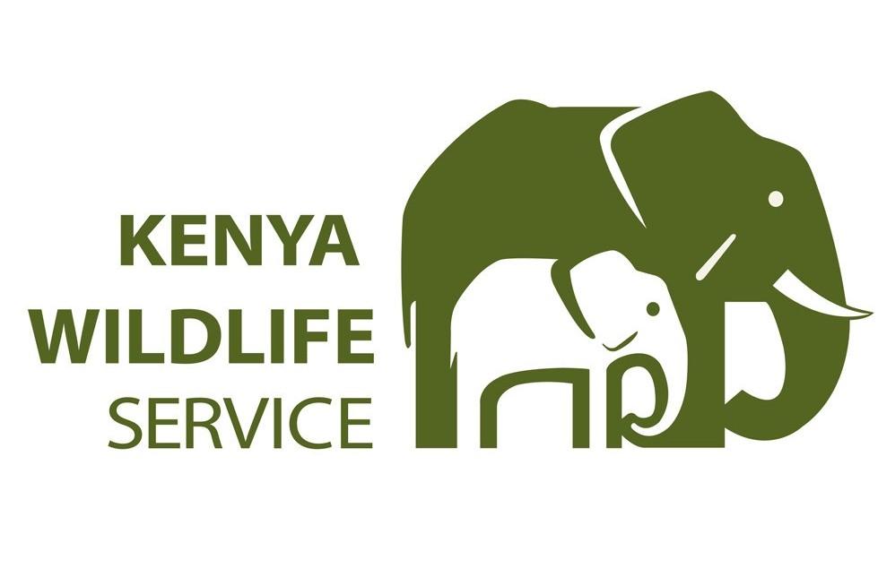 Kenya Wildlife Service_v3